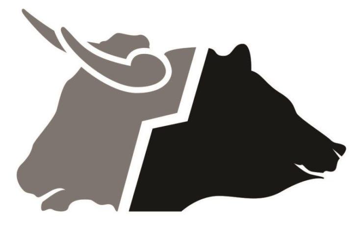 ¿Qué son los toros y los osos en el mundo de la Bolsa?
