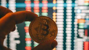 Empresa de palas de pádel en España aceptará pagos en monedas digitales