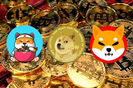 Los memecoins: la verdad sobre el dogecoin y su nuevo sucesor