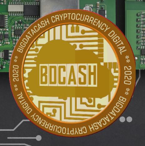 Big Data Cash