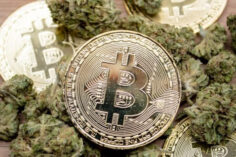 Cannabis y Bitcoin